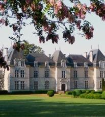 Château de Ravignan - fleurs printemps