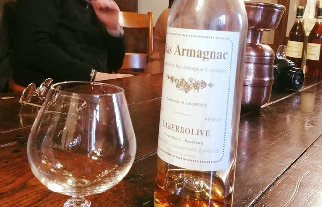 Domaines Laberdolive 2 - Labastide-d'Armagnac